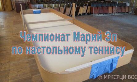 Настольный теннис шоу-дан